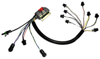 Electrical Cable Covers in addition Aussie Id Card in addition Showthread additionally Miller Aead 200le Wiring Diagram in addition Race Car With Wrench. on phoenix wiring harness